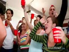 bangbros pornstars make this a college fuckfest